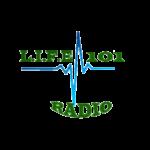 LIFE101 Radio